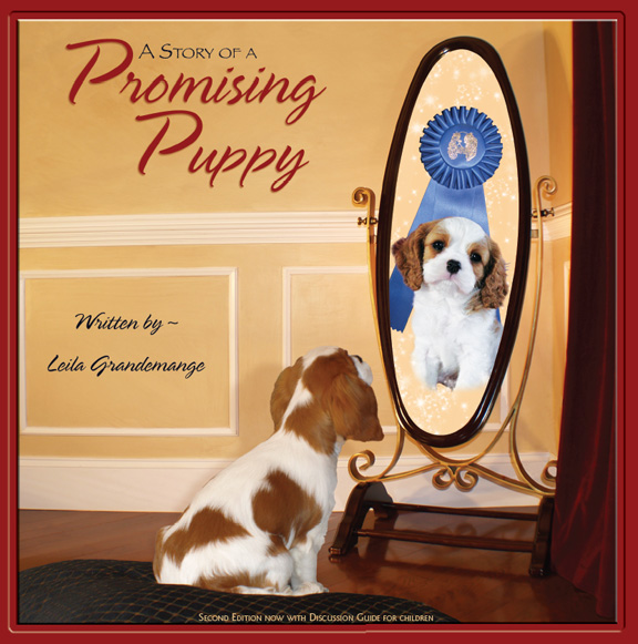 Children's book to help build self esteem, and learn the importance of being a responsible dog owner.