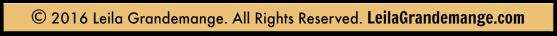 lg-copyright-header