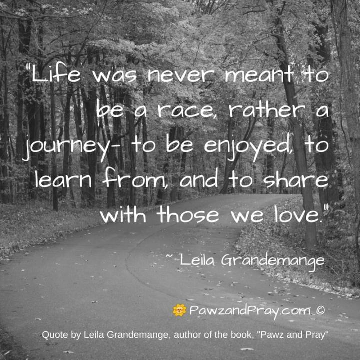 Life Was Never Meant To Be A Race Quote Leila Grandemange
