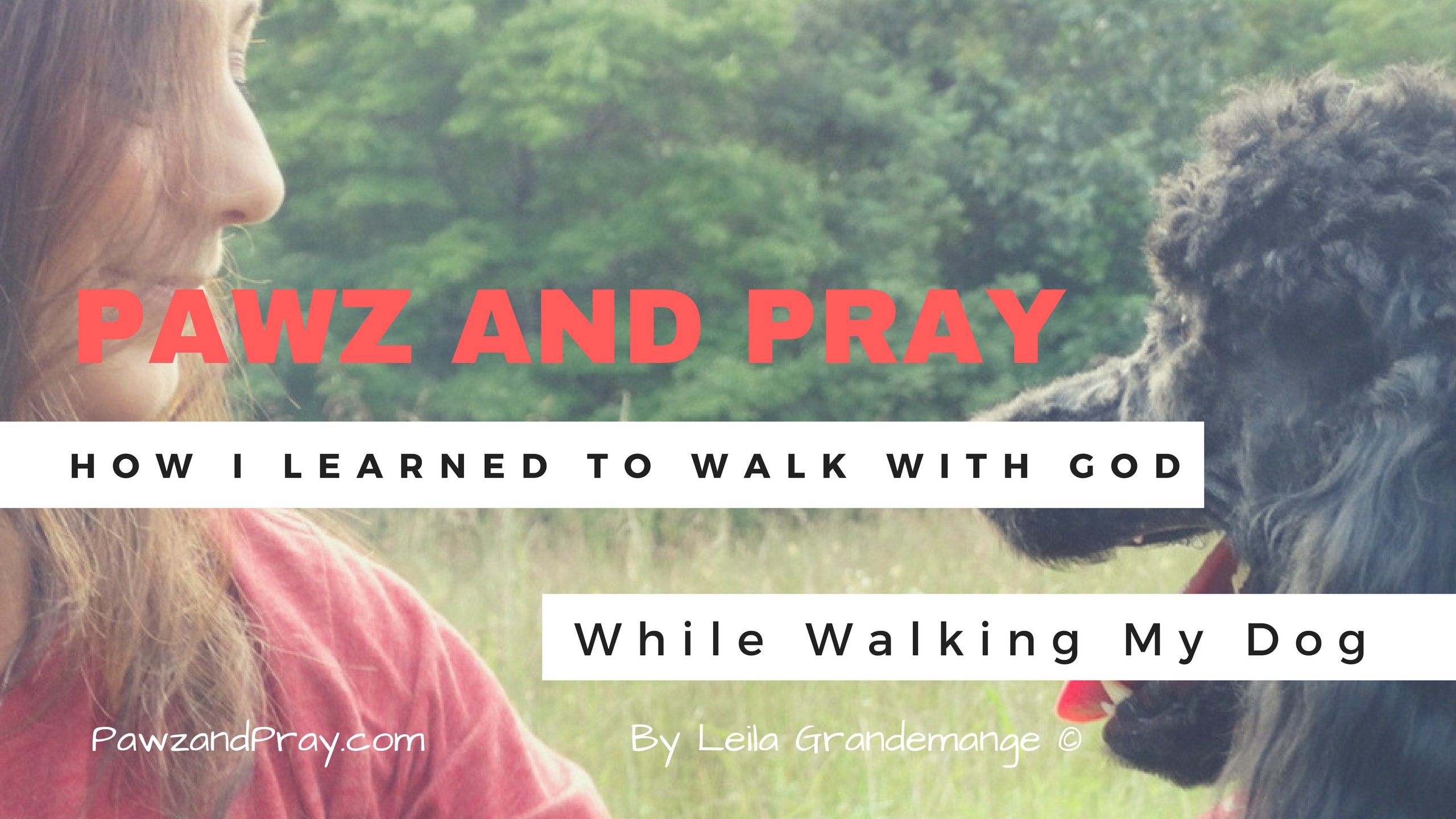 3 Amazing Insights about God Learned While Walking My Dog [Video]