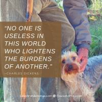 NO ONE IS USELESS IN THIS WORLD