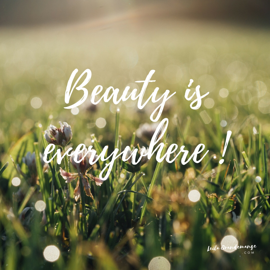Beauty is Everywhere [Quote]