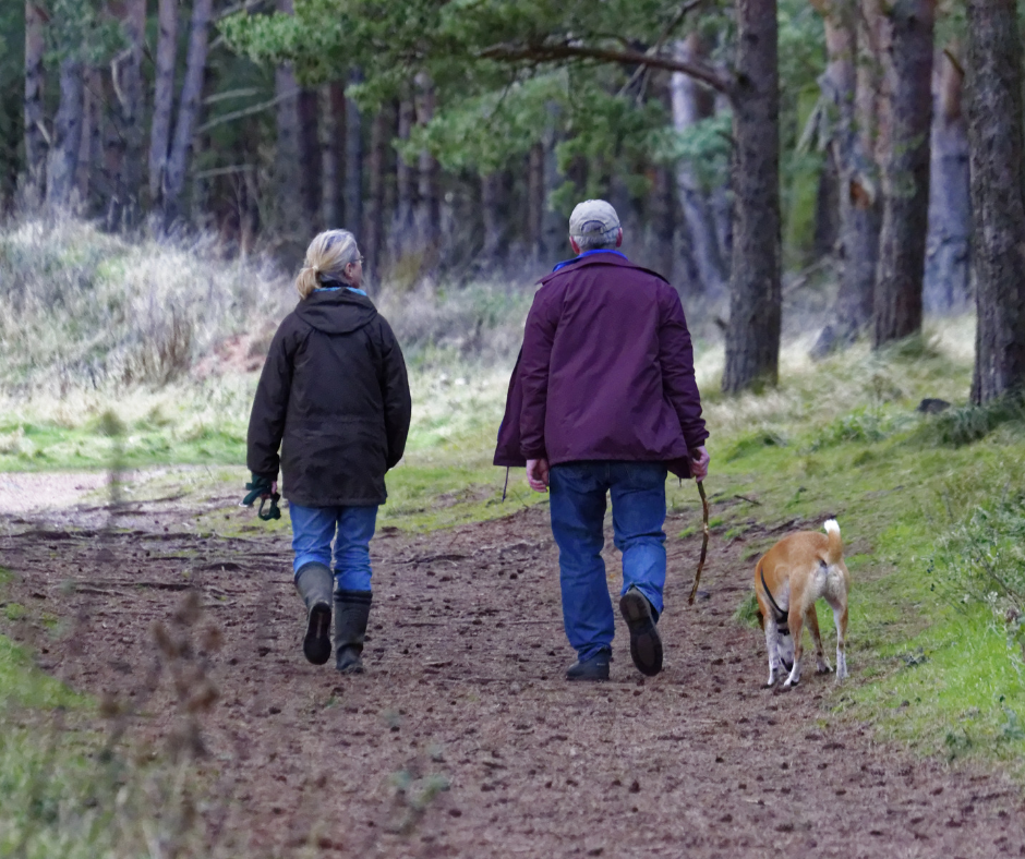 7 Amazing Benefits to Walking With Your Dog!