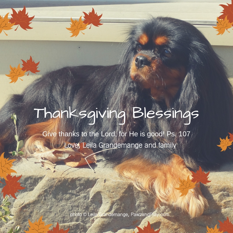 A Beautiful Thanksgiving Blessing [by Ralph Waldo Emerson]