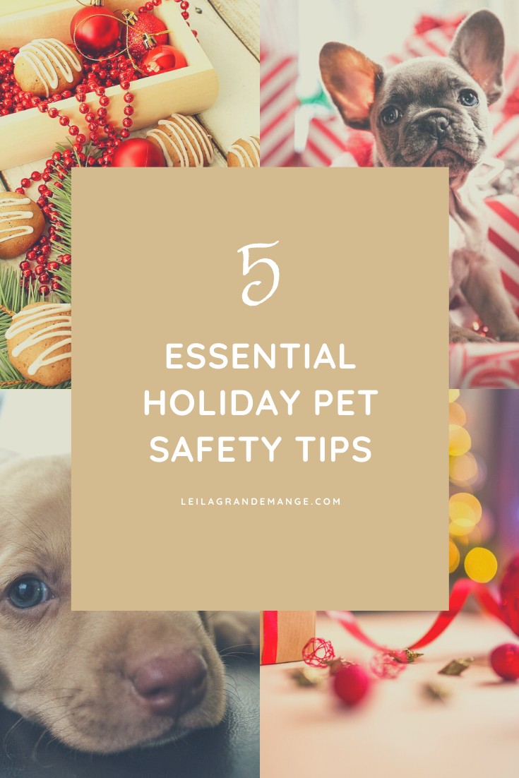 5 Essential Holiday Pet Safety Tips