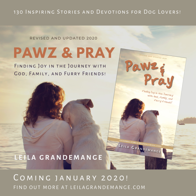 Book Reviews, Pawz & Pray: Finding Joy in the Journey with God, Family, and Furry Friends. 130 Uplifting Stories and Devotions for Dog Lovers!
