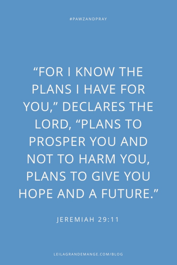 """For I know the plans I have for you,"" declares the Lord, ""plans to prosper you and not to harm you, plans to give you a hope and a future."" — Jeremiah 29:11"