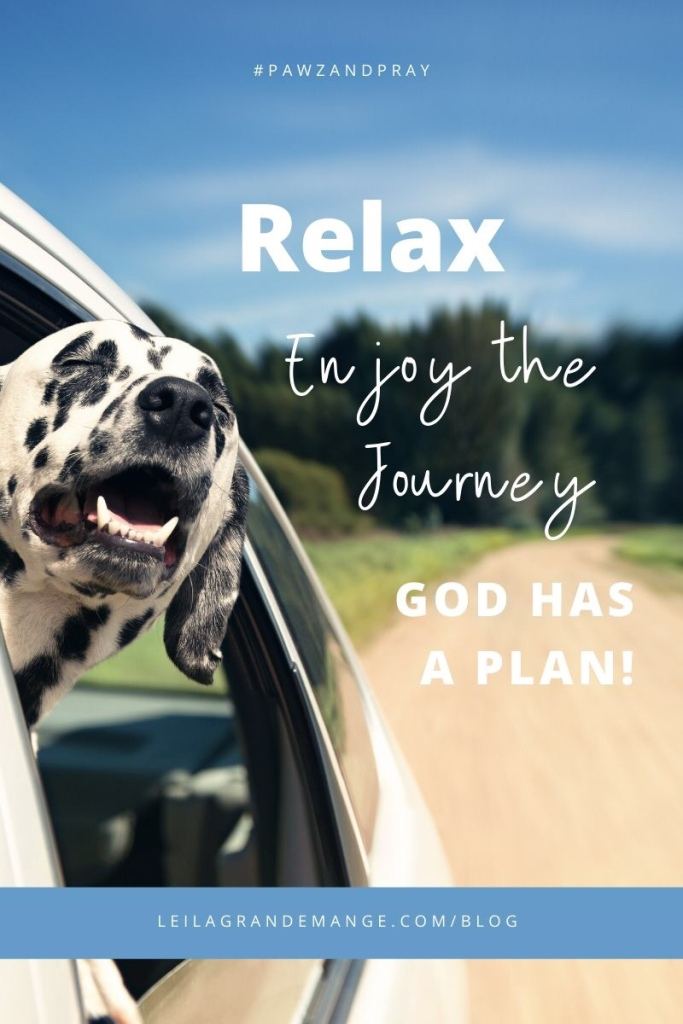 """For I know the plans I have for you,"""" declares the LORD, """"plans to prosper you and not to harm you, plans to give you hope and a future.""""— Jeremiah 29:11"""
