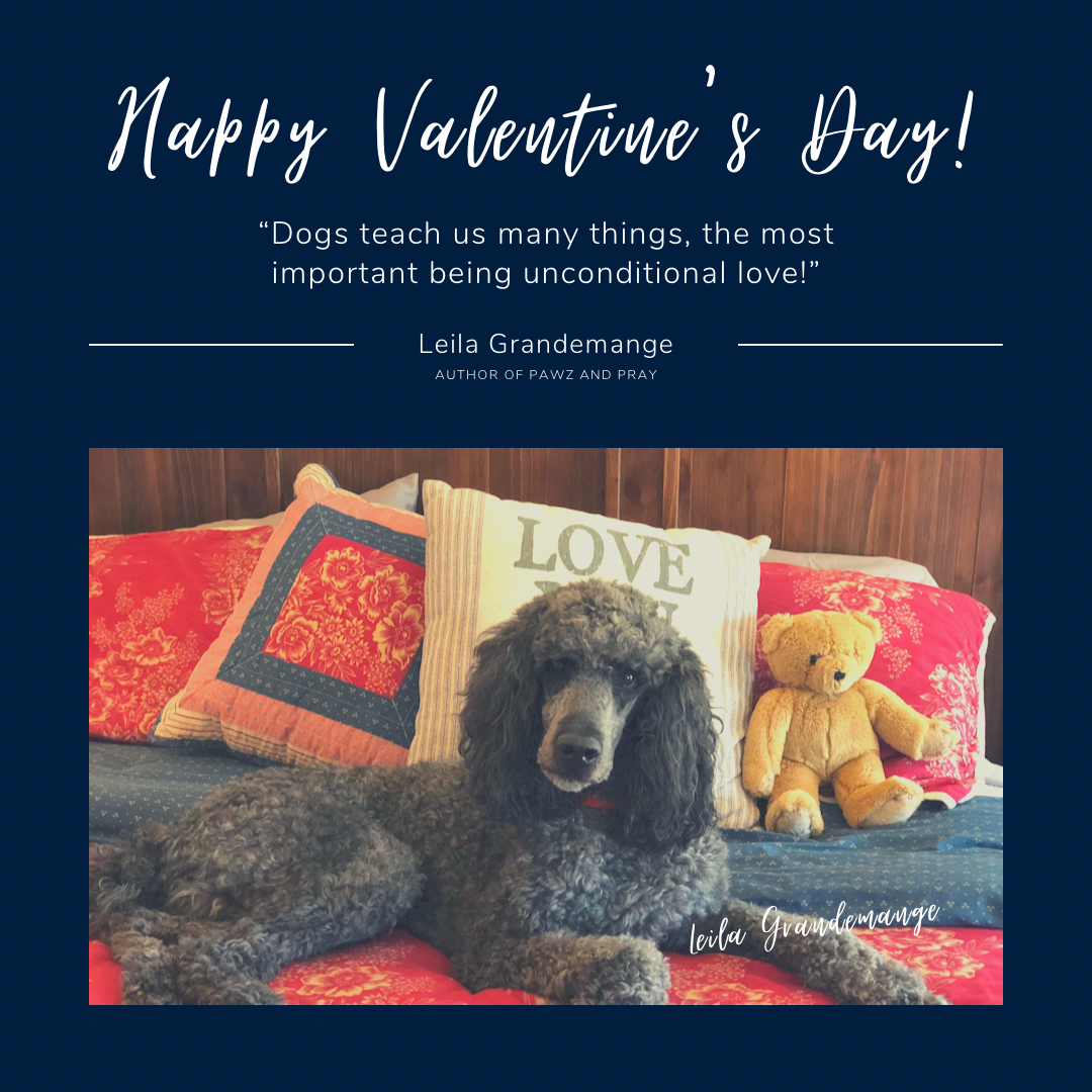 Valentine's Day Quote for Dog Lovers
